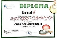 Diploma-IzabelaHurloi